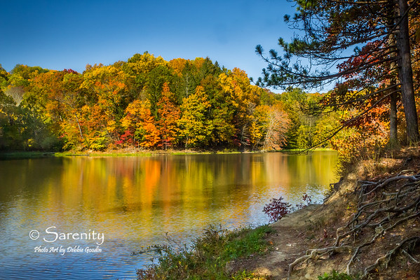 Fall Colors in Brown County State Park!