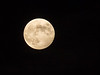 A beautiful full moon photographed from Clay County, IN!