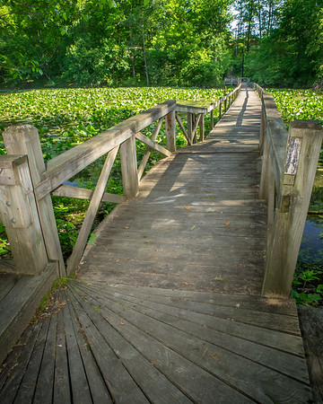 A walking bridge on the trail around beautiful Lake Shakamak!