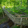 This walking bridge in Shakamak State Park winds gently through lush vibrant colors of Springtime!