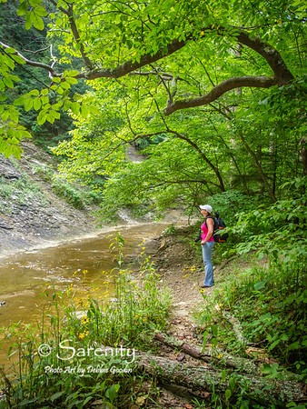 A hiker stops to view The Slide along Clifty Creek!