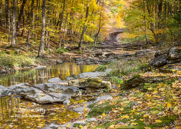 Fall colors of McCormick's Creek State Park!