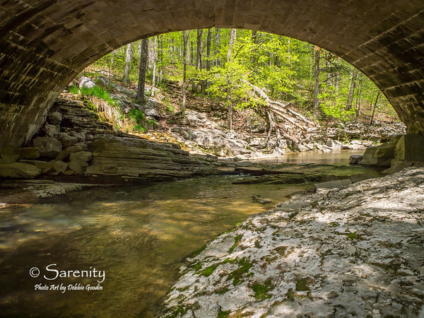 VIbrant Spring colors framed by a bridge at McCormick's Creek, along with amazing rock formations and rock shelves make up this beautiful picture!