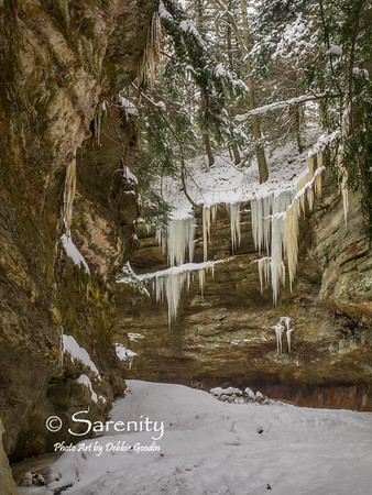 Amazing icicles hang from the canyon walls along a hiking trail in the park!