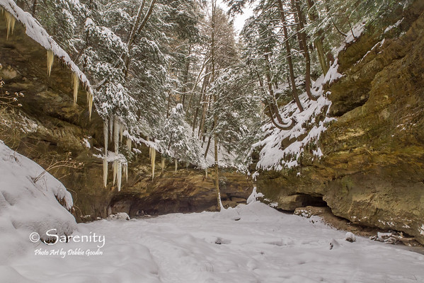 Winter in the canyon at Turkey Run!