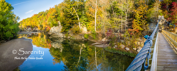 A an amazing Panoramic Photo taken from the suspension bridge at Turkey Run State Park on a beautiful Fall Day!