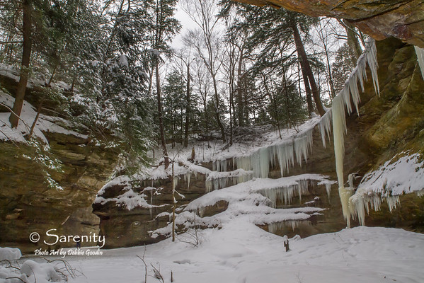 Winter Canyon, Turkey Run State Park, Marshall, IN, Parke County