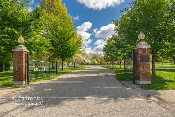 Spring's Entrance