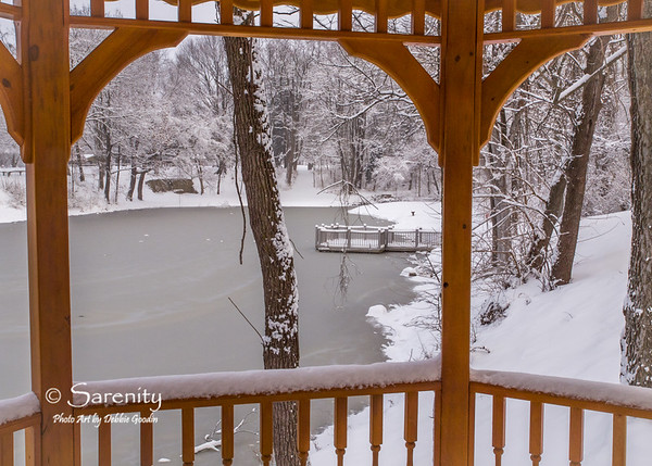 A Winter scene viewed from under the Association of Realtors Gazebo!