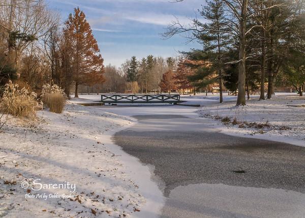 Dobbs Winter