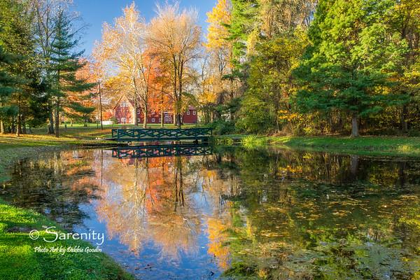 Dobbs Autumn - Sycamore Farm Barn