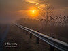 This foggy scene was captured in Eastern Vigo County, IN!  The line of the guard rail leads into the distant fog, as the sun rises in the distance!