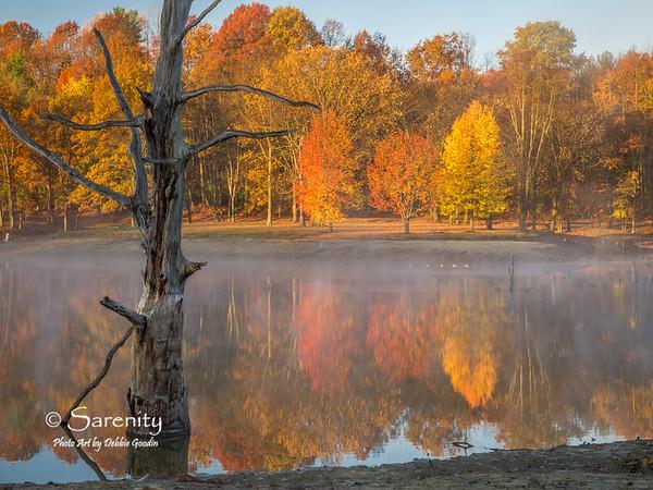 Life's Contrast, Fowler Park, Terre Haute, IN, Vigo County