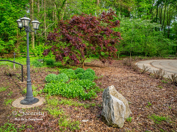 Spring in Hawthorn Park!