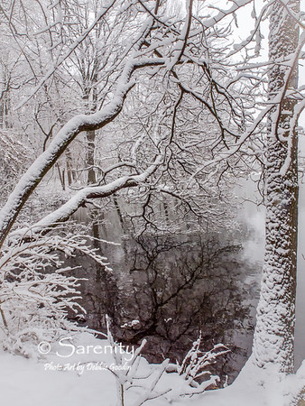 Winter in Hawthorne Park!