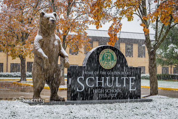 Schulte Golden Bear Sculpture by Artist Bill Wolfe