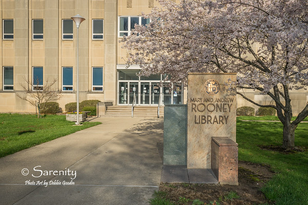 Mary and Andrew Rooney Library