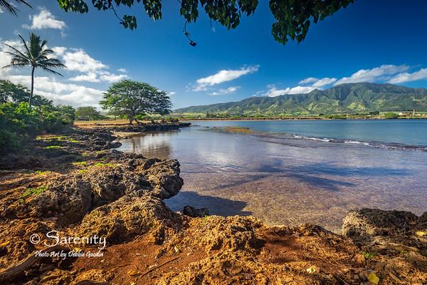 Majestic Aloha