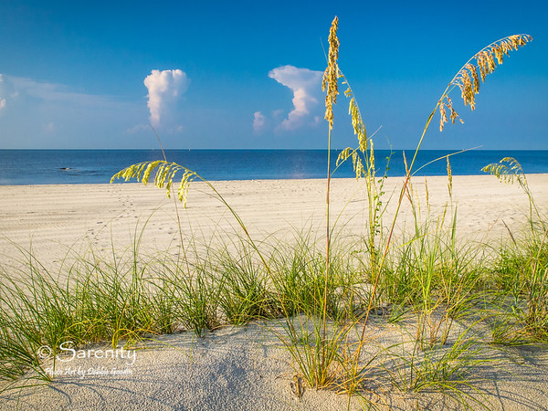 I love these grasses on the beach with the early morning sky behind and the footprints in the sand leading to the waters of the Gulf and a little wave action happing in the water!