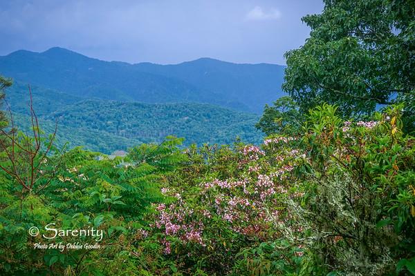 Blue Ridge Parkway, Smoky Mountains, NC