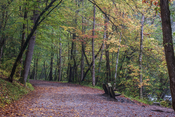 Deep Creek Park - Fall
