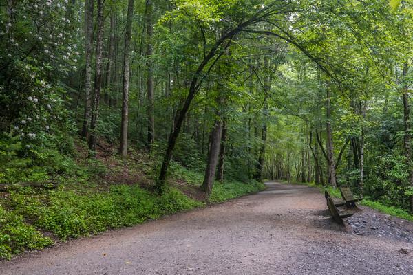 Deep Creek Park, NC