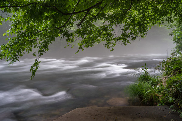 This image was created at Patton's Run Overlook in the Nantahala National Forest.  It was evening time, and the fog rising from the waters of the river creating a mystical feel to this scene.