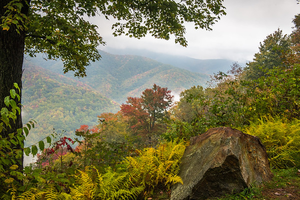 Fall Glimpse, Great Smoky Mountain National Park, NC