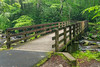 Kephart Prong Trailhead Pedestrian Bridge