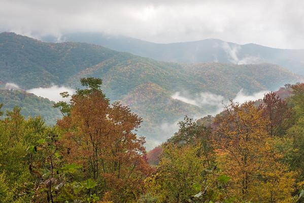A Glimpse of Fall