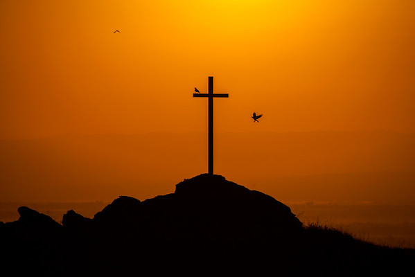 Ravens and the Cross