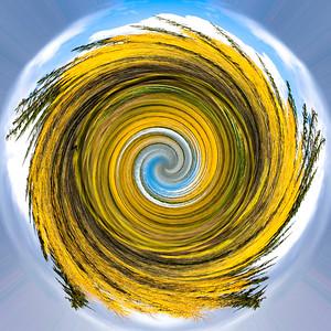 Aspen Swirl