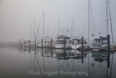 Foggy Morning At Anacortes Marina, Anacortes, WA