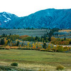 Meadow Along Green Creek Rd.