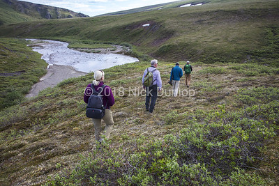 Mary, Tim, Xavier and David hike to a Gyrfalcon eyrie