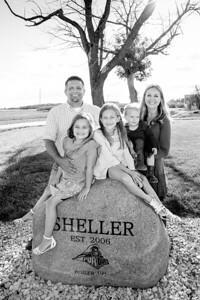 Sheller2018-0559-3