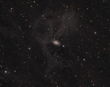 NGC918 through a veil of IFN Cirrus