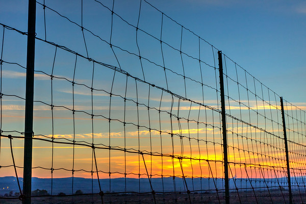 Sunset Fence