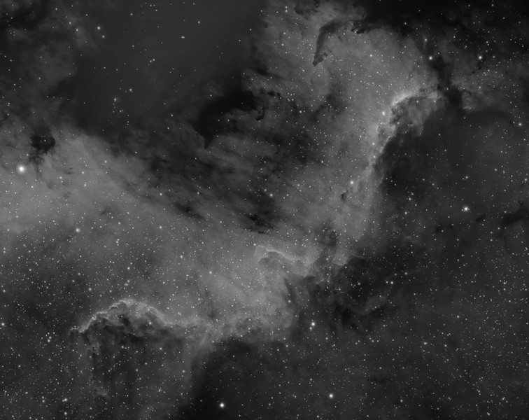 NGC7000 The Mexico Wall region of The North America Nebula