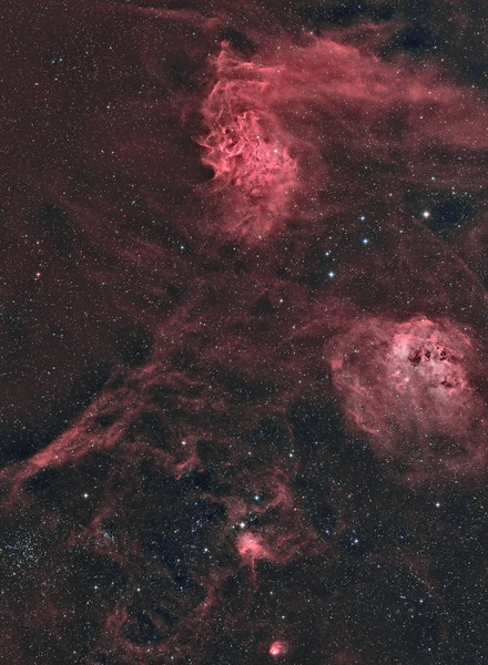 IC410 & IC405, The Flaming Star and The Tadpoles Nebulas, IC417 & NGC1931 The Spider and Fly Nebulas and Messier 38