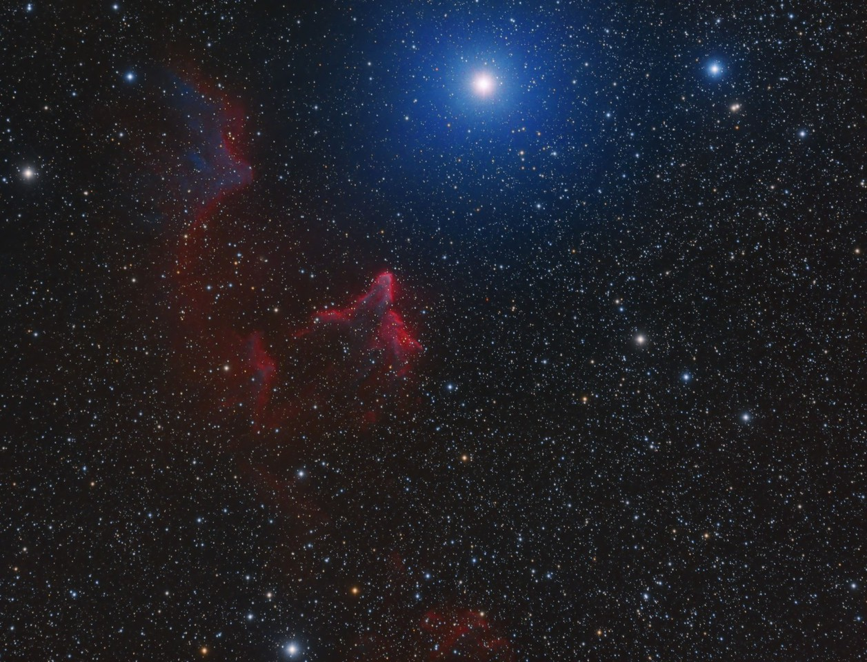 IC59 and IC63 in CassiopeiaI