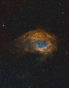 Sh2-261 Lower's Nebula