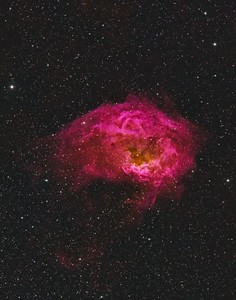 Sh2-261 Lower's Nebula in CFHT