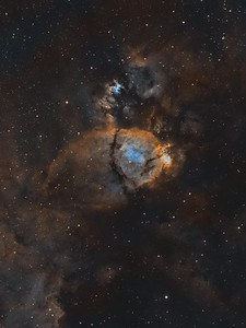 The Fish Head Nebula IC1795