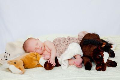 Bode Newborn-4349