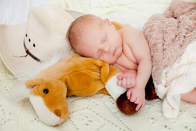 Bode Newborn-4361