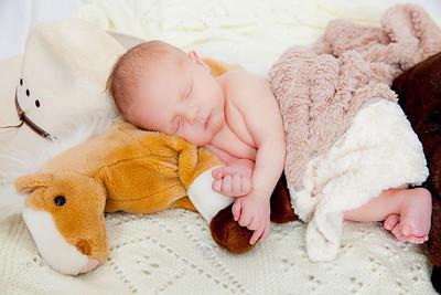 Bode Newborn-4362