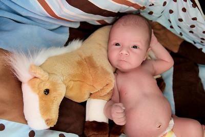 Westin Newborn-22