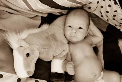 Westin Newborn-23