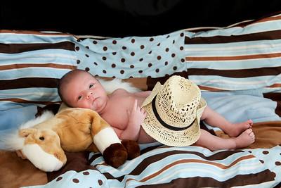 Westin Newborn-24